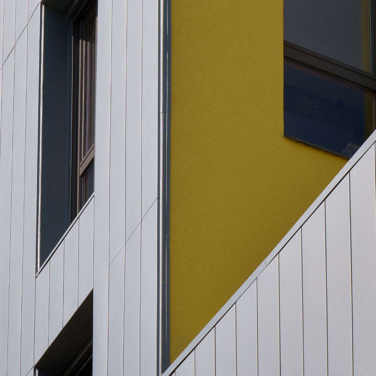 yellow_detail.jpg